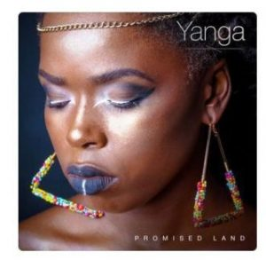Yanga – Artificial Heart